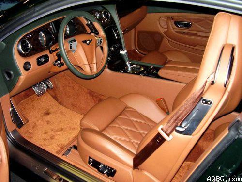 luxuriouscar.jpg